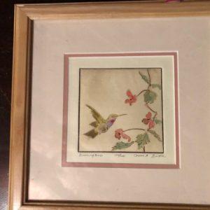 Hummingbird limited edition Bare