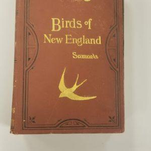 Birds of New England Book